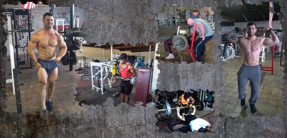 powerhousegymhouston_bodybuilders